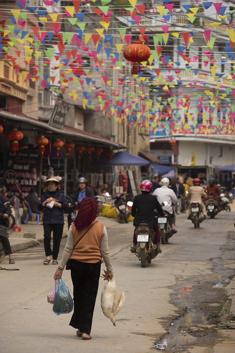 Vietnam - Muong Khuong - Woman holding a duck, in a shopping lane - Photo by Dominique David